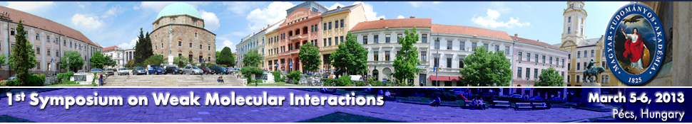 1st Symposium on Weak Molecular Interactions - March 5-6, 2013 - P�cs, Hungary